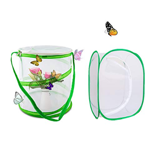 Counius 2 Stück Schmetterling Habitat Käfig Faltbarer Netzkäfig Für Tragbarer Insekten Sämlingszucht Pflanzengewächshaus Schutzkäfig Insektenzuchtkäfig 14x15cm