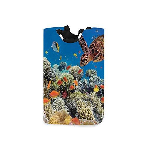 Paquete de ropa sucia, peces tortuga vieja carey flota bajo el agua, arrecifes de coral Dahab mar rojo, cesta para la colada, cesto de ropa, almacenamiento de ropa sucia, baño