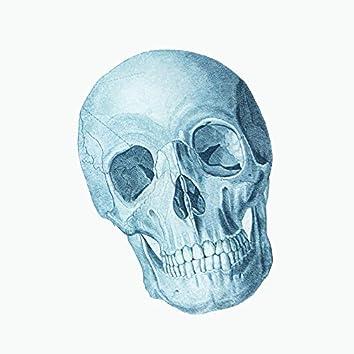 Skeleton Time