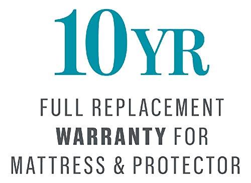 BedGard 10-Year Mattress Protection King (C)