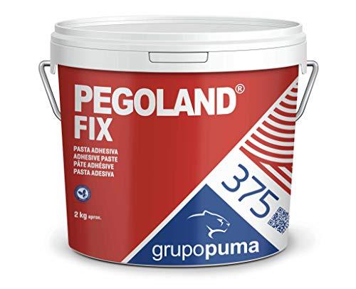 375 Pegoland Fix Blanco D1: adhesivo en pasta ideal para reparaciones de piscinas, revestimientos cerámicos. Bote 2 KG
