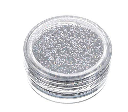 ZZDJ Faux Cils Maquillage Fard à paupières Pigment Silver Sparkly Makeup Glitter Loose Powder Makeup Cosmetic A