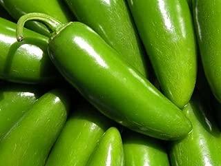 Pepper Hot Jalapeno Tam Mild Great Heirloom Vegetable 3,000 Seeds Bulk Wholesale