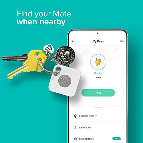 Never lose your keys (or kids) again with tracking tiles 2