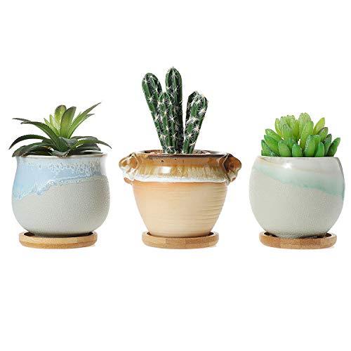 T4U Vasetti per Piantine Ceramica con Vassoio di bambù Set di 3, Piccola Vasi in Ceramica per Piante Grasse da Interno Vasi Cactus per Succulente Piccoli