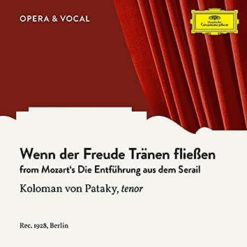 Mozart: Die Entführung aus dem Serail: Wenn der Freude Tränen fließen