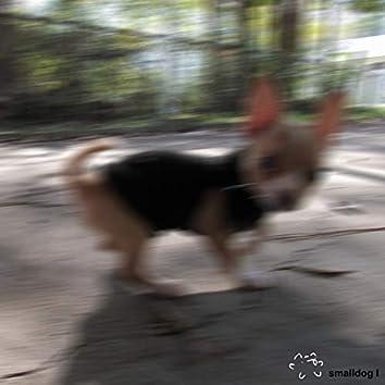 Smalldog I