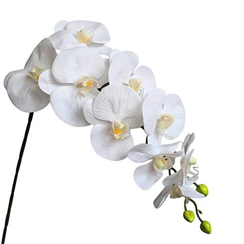 QueenHome per La Decorazione Domestica Wedding Hotel 9 Artificiale Bianco Phalaenopsis Fiore Decorativo Real Touch Farfalla Orchidea Fiore Lattice Orchidee