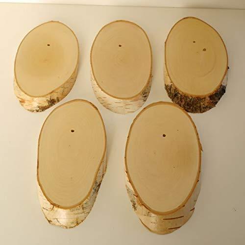 5 Stück Birke Schild Trophäenschilder für REH Rehbock Geweih Baumscheibe Baumschild Natur Holz modern AF18-20cm