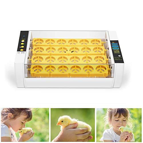 PAKASEPT Inkubator, Vollautomatische Brutmaschine 24 Eier mit Feuchtigkeits- und Temperaturregelung, Brutapparat mit LED Temperaturanzeige und Präzieser Temperaturfühler für Chicken Duck Bird Quail