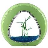 Nobleza - Acuario pecera de diseño Moderno con Ventana de Cristal y luz LED, Color Verde. Capacidad de 4L