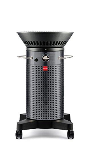 Fuego F21C Model Carbon Steel Fuego Element Gas Grill BBQ Barbecue