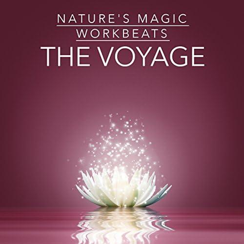 Nature's Magic, Workbeats