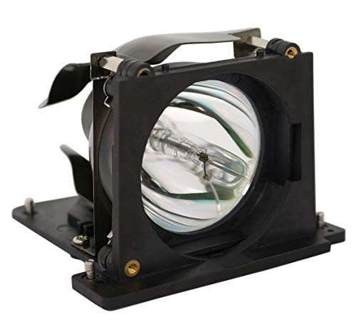 GOLDENRIVER BL-FU200B SP.81G01.001 Projector Lamp with Original Bulb and Generic Housing Compatible with OPTOMA Theme-S H30A/H31