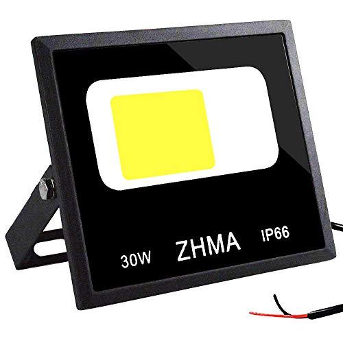 ZHMA 30W LED Flood Light Outdoor, Super Bright 12V-60V Security Light, IP66 Waterproof Landscape Spotlight (Daylight White), Low Voltage Light for Wall, Shed, Garage, Garden Lighting (DC ONLY)