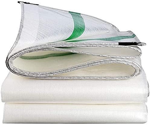 Lonas CHGDFQ, Lona Multiusos para Exteriores, Lona de plástico Espesa a Prueba de Lluvia y protección Solar, Utilizada en almacenes de Camiones de jardín, Resistente al Agua (tamaño: 3 * 5 m)