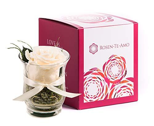 Rosen-Te-Amo, duftende Premium konservierte ewige Rose weiß in Vase handgefertigt mit echtem Bindegrün in feiner Geschenk-Box (neu). Infinity Rosen: Geschenke für Frauen & Deko Wohn-Zimmer