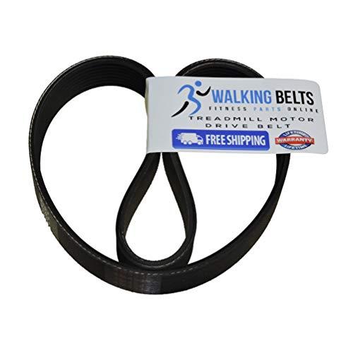 WalkingBeltsLLC - ProForm 285T Treadmill Motor Drive Belt PFTL29105 + Free 1oz Lube