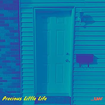 Precious Little Life