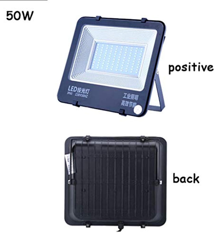 Xien Scheinwerfer Scheinwerfer LED Strahler Mit LED Strahler Mit Wasserdichtes Arbeitslicht Für Auenbeleuchtung Scheinwerfer Für Scheinwerfer (Farbe   50W)