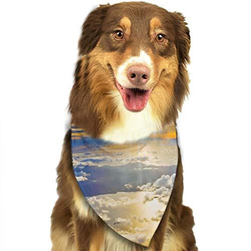 Zonsondergang Van Een Vliegtuig Behang Gepersonaliseerde Hond Kattenhalsdoek Set Geschikt voor Kleine Tot Grote Hond Katten