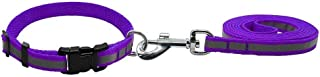 RvPaws Nylon Leash with Collar Set for Puppy, Pet Reflective Nylon Collar with Leash Set for Puppies and Dogs 15mm, Purple...