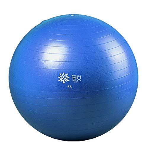 HomeDecTime Pelota de Yoga Pelota de Ejercicio Ant-Burst Balance Ball para Pilates Gym Home Fitness - Azul