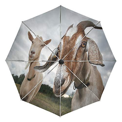 Paraguas automático de dos cabras con aspecto de cámara, resistente al viento, resistente al agua, protección UV, paraguas de viaje – 3 pliegues con botón de apertura y cierre automático, sol y lluvia