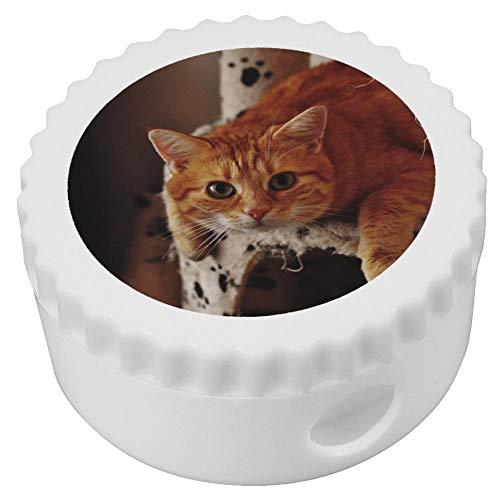 Stamp Press 'Rote Katze' Kompakt Spitzer (PS00008461)