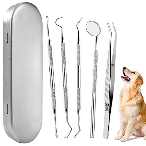 Limpiador de Dientes para Perro Sarro Dental Limpiador Mascota Herramienta de Cuidado Bucal de Acero Inoxidable 5 Piezas