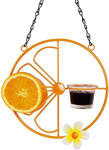 FORUP Oriole Bird Feeder for Outdoors Jelly and Oranges Orange Fruit Oriole Jelly Bird Feeder product image