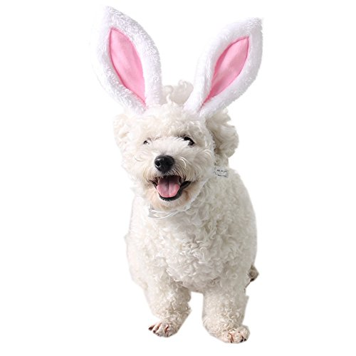 FLAdorepet Halloween Bunny Ears for Your Cats & Small Dogs Party Costume Accessory Headwear (S(Head Girth 10'), White)