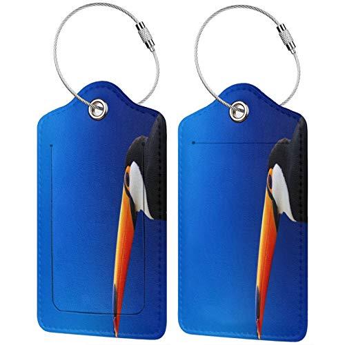 FULIYA Reisegepäck-Etiketten, Ausweis-Etiketten, Visitenkartenhalter, Set mit 2 Stück, Tukan, Vogel, Schnabel, Farbe