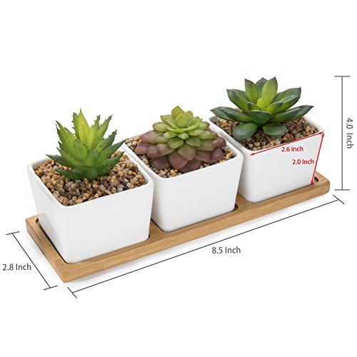 MyGift Set of 3 Assorted Artificial Succulent Plants in Square Ceramic Planters with Bamboo Tray