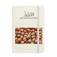 温帯果実の新鮮なプラム 化学手帳クラシックジャーナル日記A 5