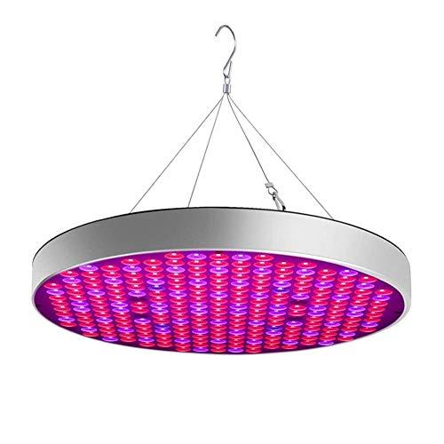 Luces de cultivo para interiores Lámpara de planta Lámpara de crecimiento Lámpara de guardería, Luz de espectro UFO para plantas de interior, Luz de relleno de luz solar interior de 50 W Luz de rell