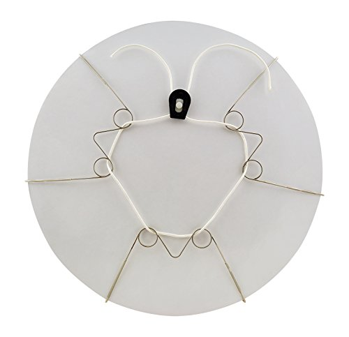 Display Buddie Large Adjustable Plate Holder Decorative Plate Wall Hanger | Plate Hangers for The Wall | Vase Hanger, Bowl Hanger, and More! Hang & Display Decorative Plates on Your Wall | Size L