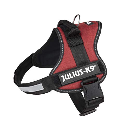 Julius-K9 162SC-BR-0 K9 Powerharness for Dogs,...