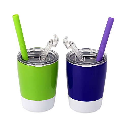 Housavvy Kids Cups 2 Pack 8.5oz - Stainless Steel Kid Cup Set with Lids and Straws - Double Wall Insulated Toddler Cups - Kids Tumbler for Boys and Girls - BPA Free Childrens Smoothie Drinking Cup