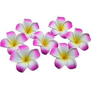 Ewanda store 100 Pcs Diameter 1.6 Inch Artificial Plumeria Rubra Hawaiian Foam Frangipani Flower Petals for Weddings Party Decoration(Hot Pink)