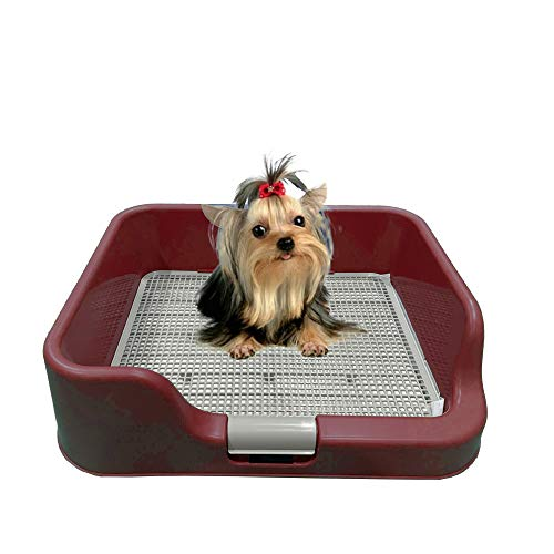 PS KOREA [DogCharge] Indoor Dog Potty Tray - with Protection Wall Every Side for No Leak, Spill, Accident - Keep Paws Dry and Floors Clean