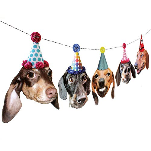 Dachshunds Garland, dog birthday party decoration banner, Made in USA, Best Quality