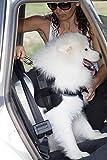 Sicherheitsgurt Hund ausziehbar / Auto Sicherheitsgeschirr für mittlere und große Hunde / Hunde Anschnallgurt - 6
