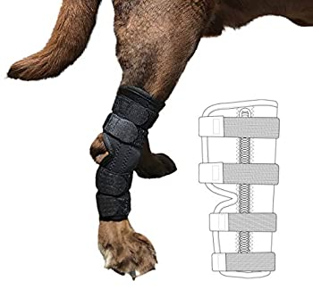 Labra Supportive Dog Rear Leg Hock Joint Wrap Brace with Metal Springs Protects Canine Wounds as They Heal Compression Brace Heals and Prevents Injuries and Sprains Helps Arthritis  Small