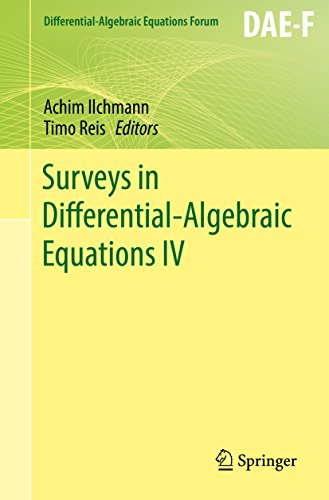 Surveys in Differential-Algebraic Equations IV (Differential-Algebraic Equations Forum) (English Edition)