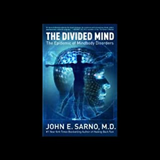 The Divided Mind audiobook cover art