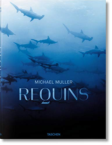 FO-Requins