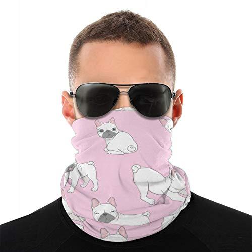 EU Perro Seamless Bulldog Francés Paw Repeat Summer Transparante Zonnebeschermer Pañuelo en la Cabeza Máscara de montar Multifunctioneel Headwear Máscara UV-bescherming