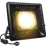 Lámpara Planta 50W COB LED Espectro Completo Crece Lluminación de Plantas Relassy IP67 Impermeable Lámpara LED para Plantas de Interior y Exterior Hortícola Luz Ultrafino (Luz Blanco Cálido)