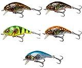 Savage Gear 3D Goby Crank SR schwimmend Wobbler - Crankbait für Barsch, Forellen & Döbel, Barschwobbler, Forellenwobbler, Hardbaits für Raubfische, Größe / Gewicht / Farbe:5cm / 6.5g / UV Red & Black